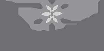 Linda James Photography logo